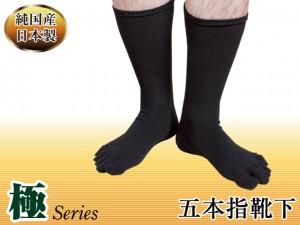 極5本指靴下